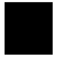 icon_shield1